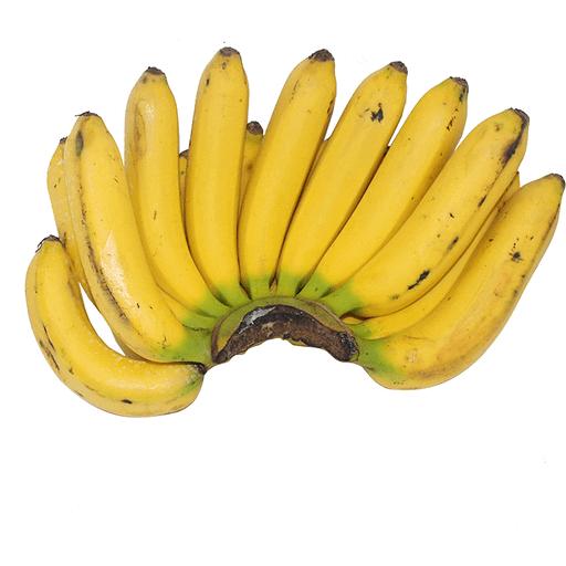 Banana Lacatan